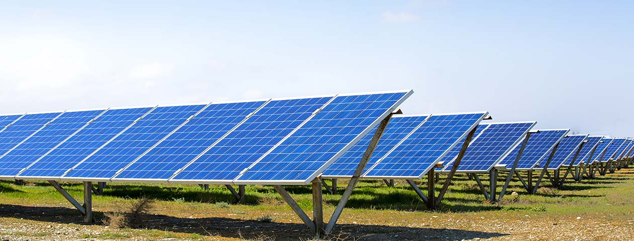 Director Disqualified for Solar Panel Scam